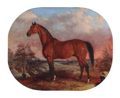 Edward Troye (American, 1808-1