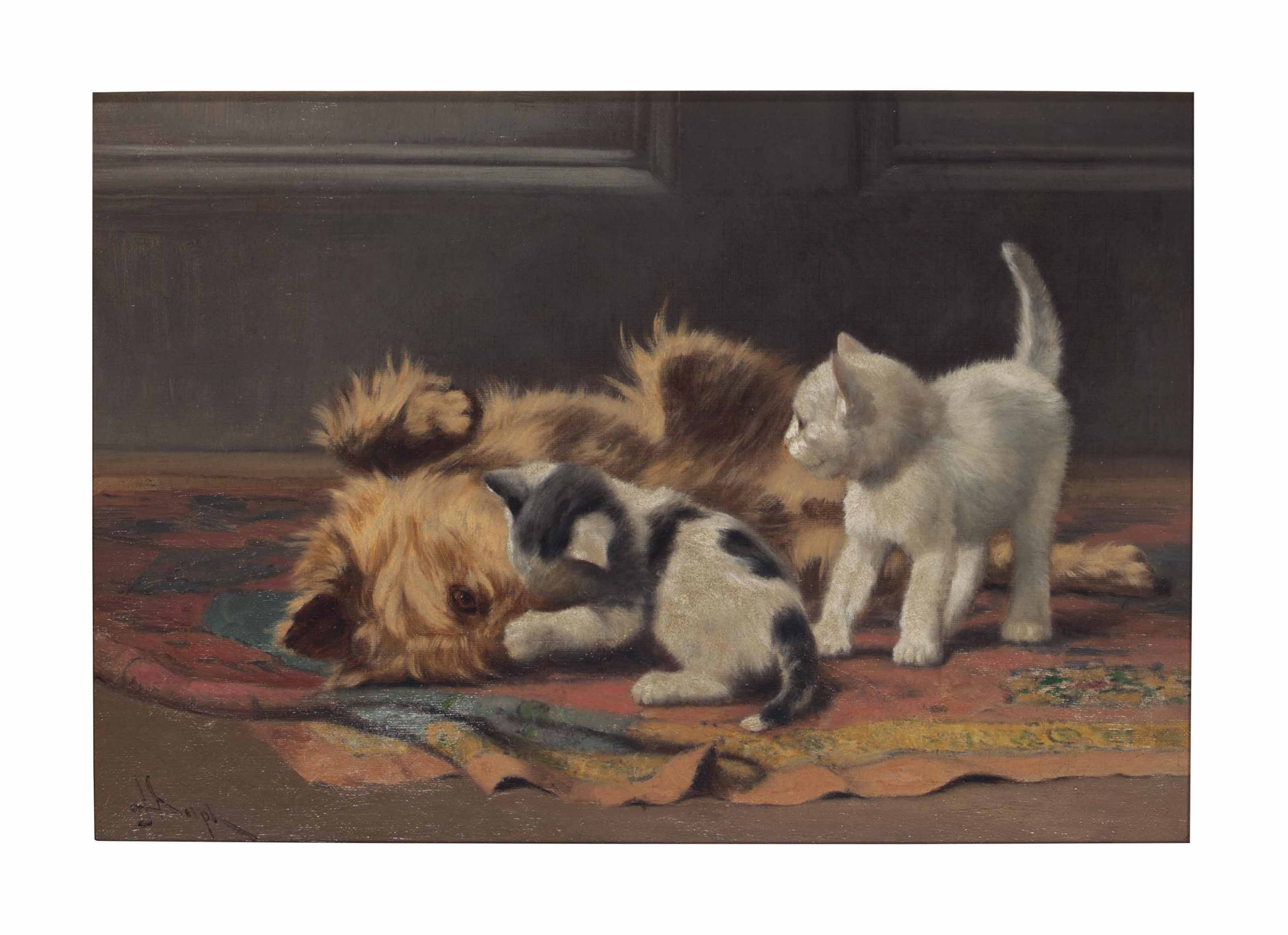 Playful Terrier and Kittens