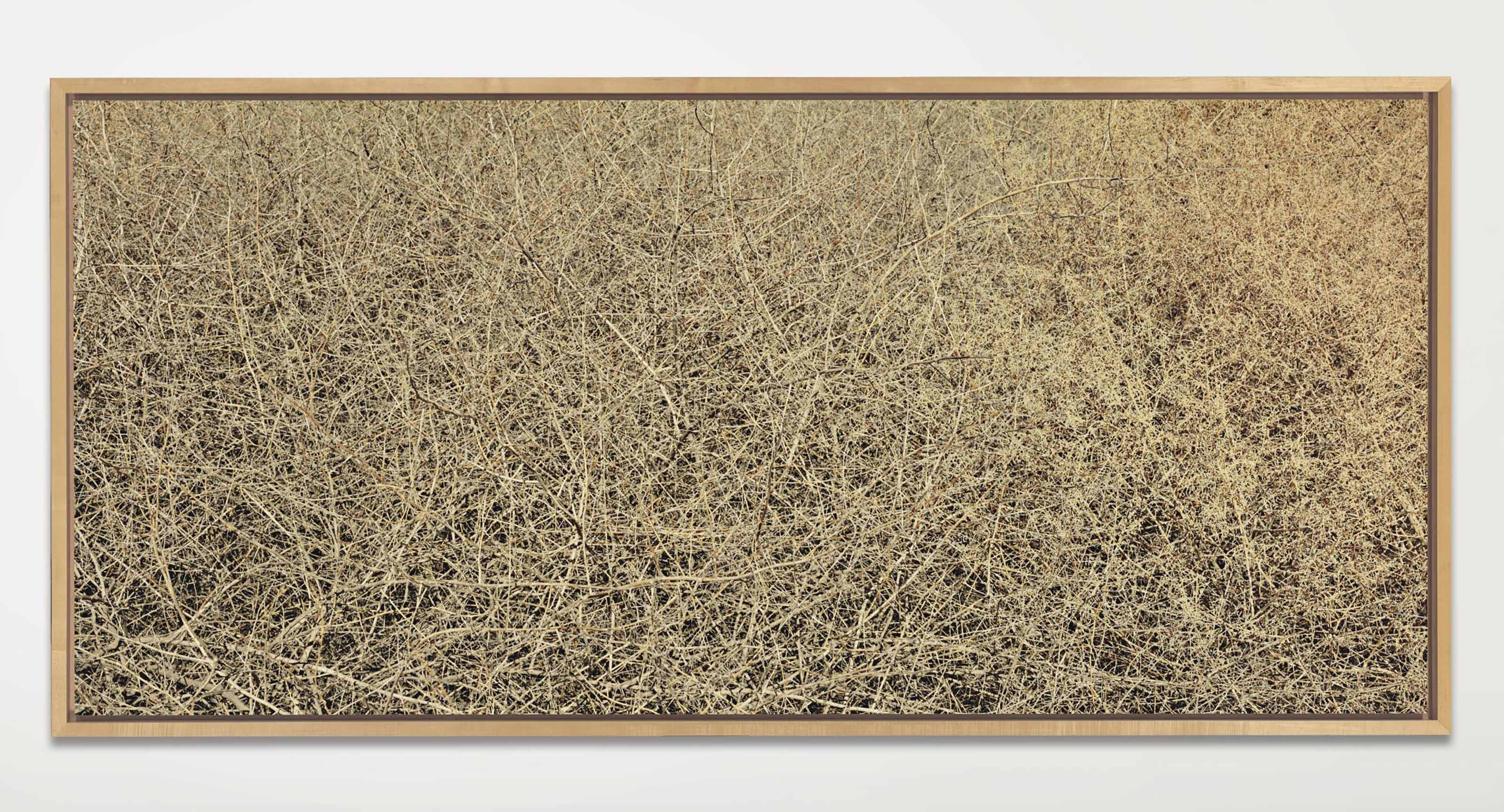 Untitled #724-96, 1996