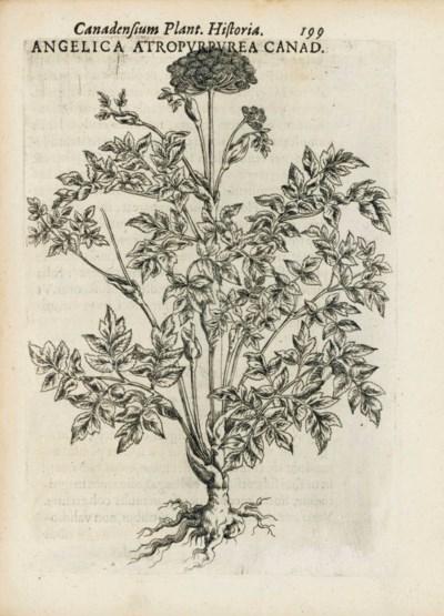 CORNUT, Jacques Philippe (1606