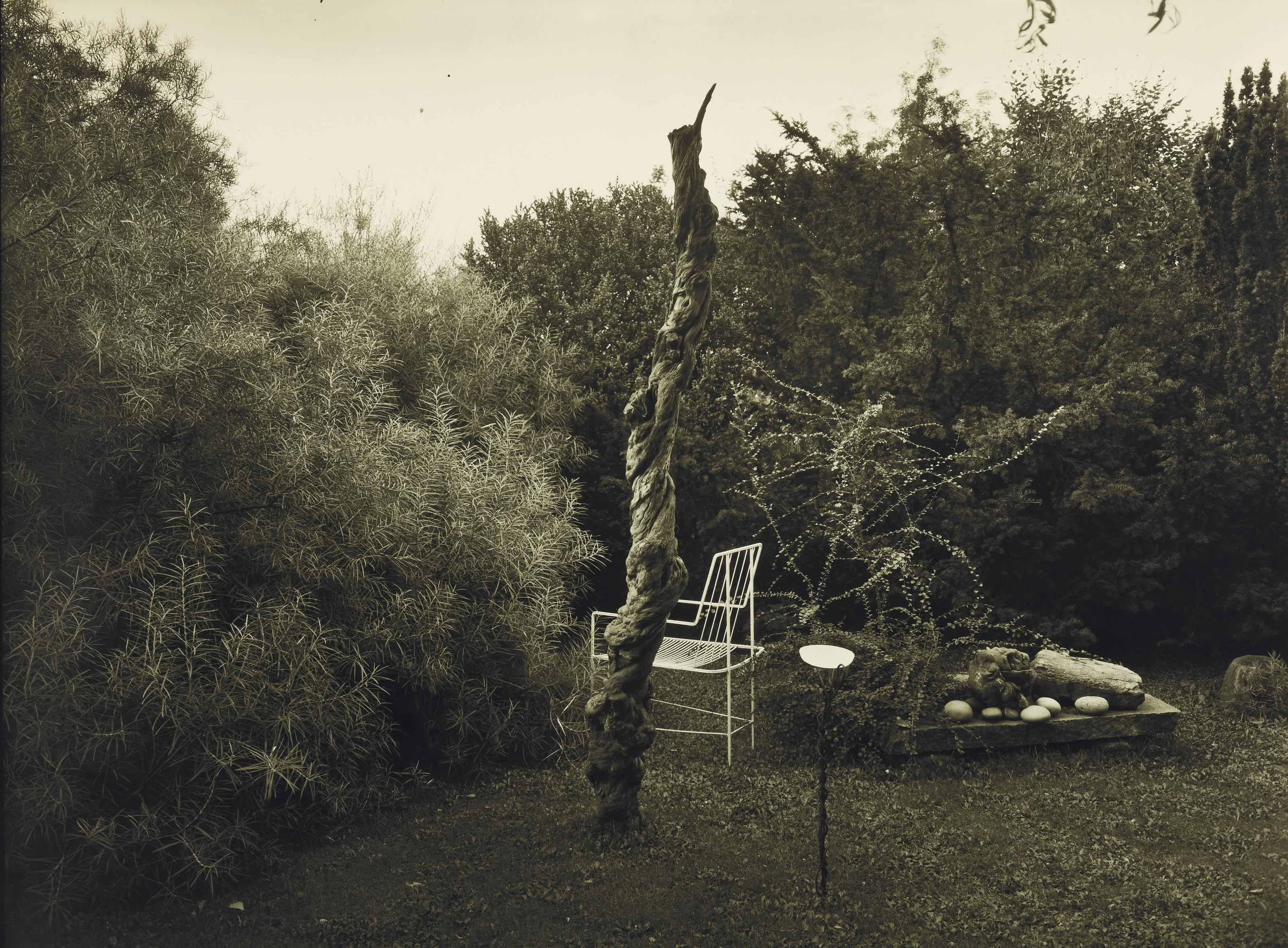 From the series 'In the Magic Garden', c. 1956