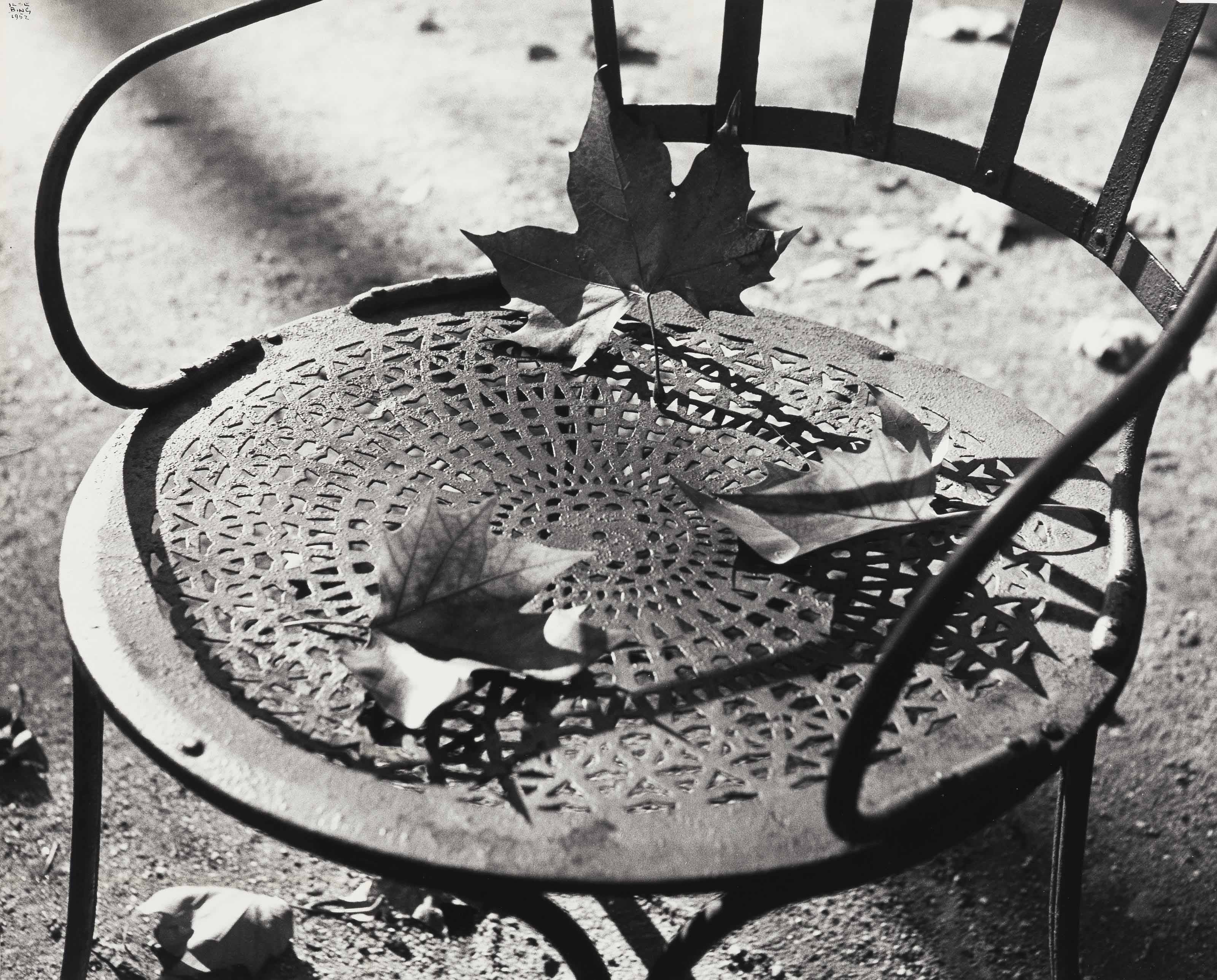 Chair with Dead Leaves, Jardin de Luxembourg, Paris, 1952