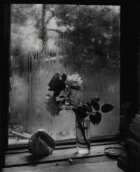 Last Roses from the series 'The Window of My Studio', 1956