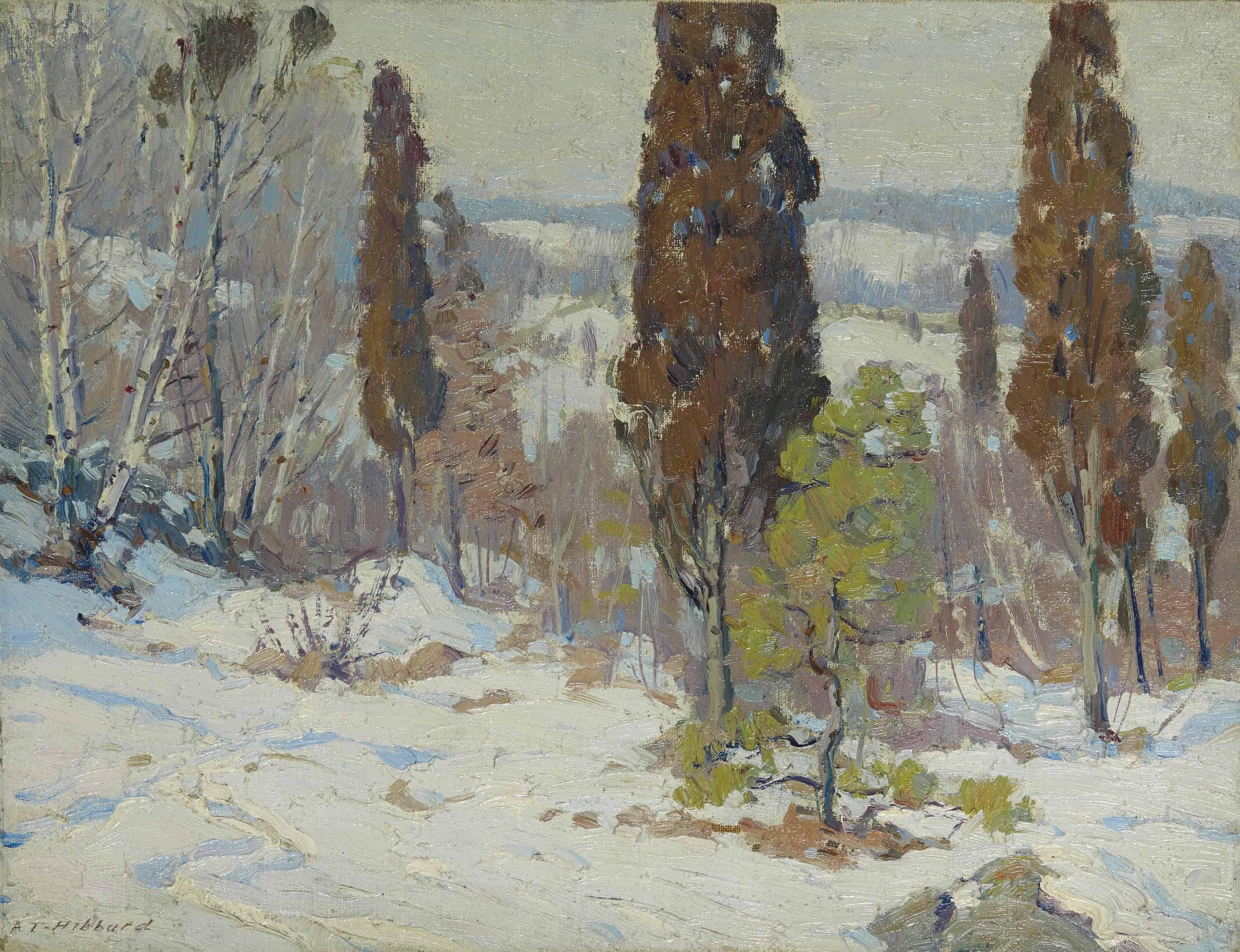 Peupliers dans un paysage de neige