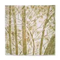 Verde nel bosco