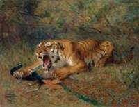 Le tigre et le paon