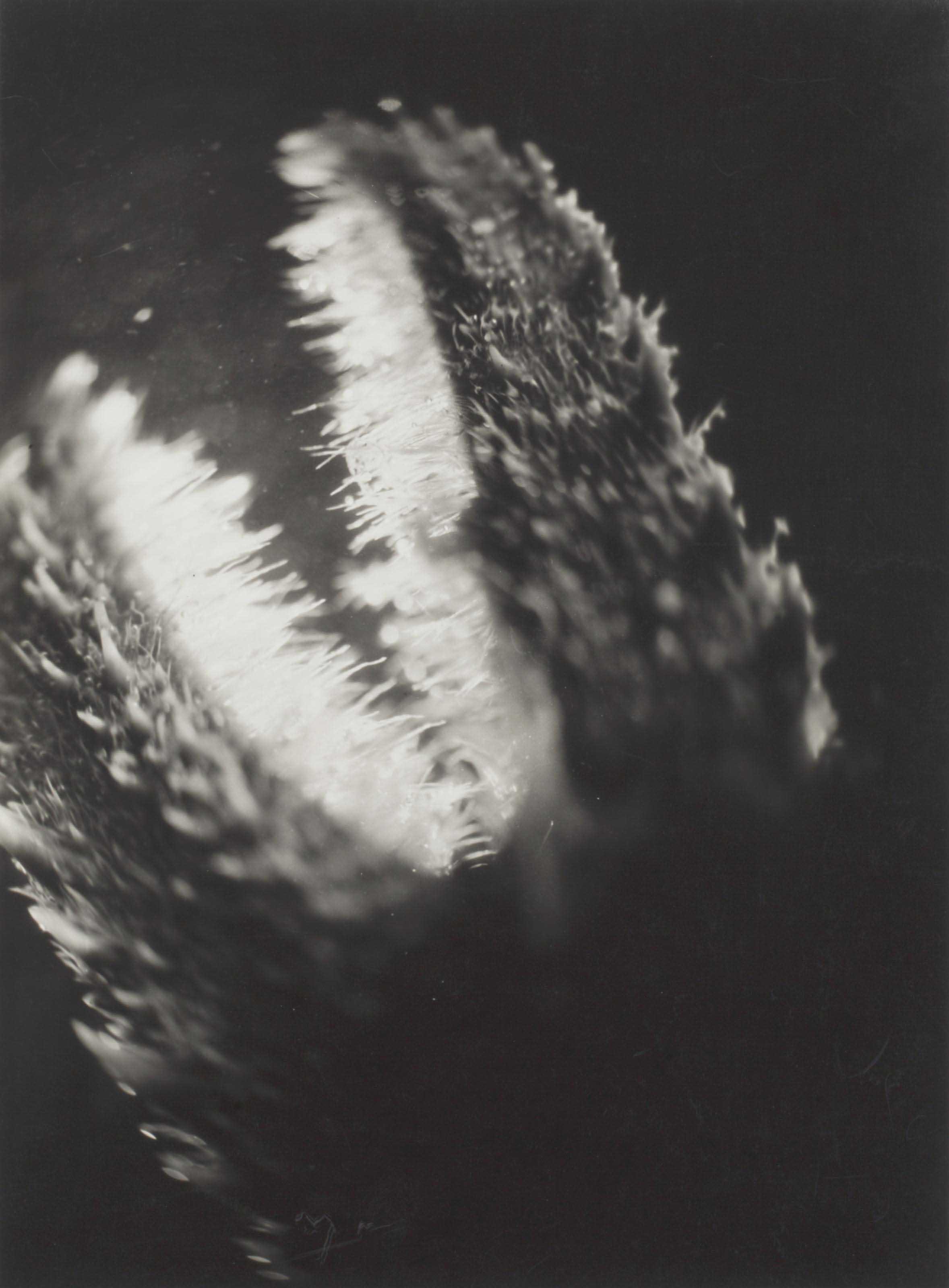 Pince de Galathée, 1928