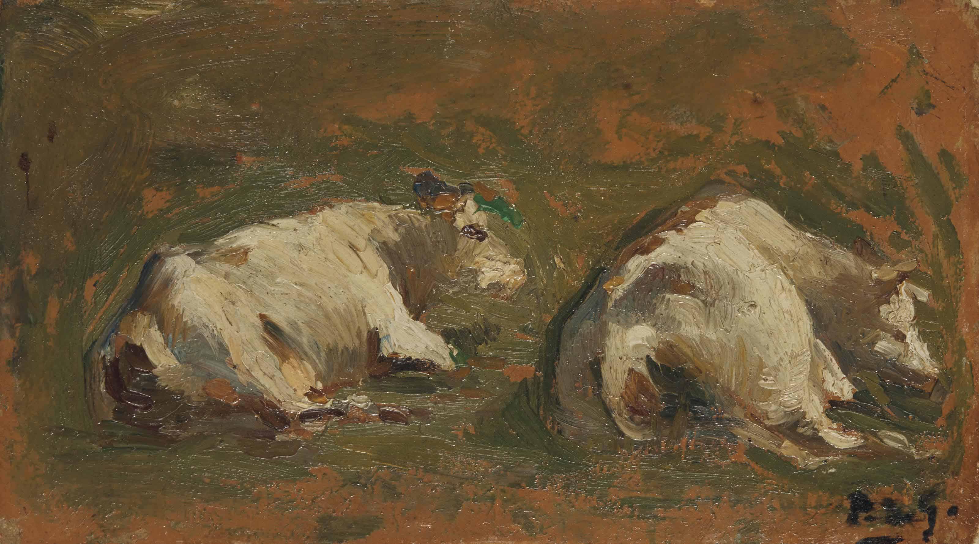 Deux vaches blanches