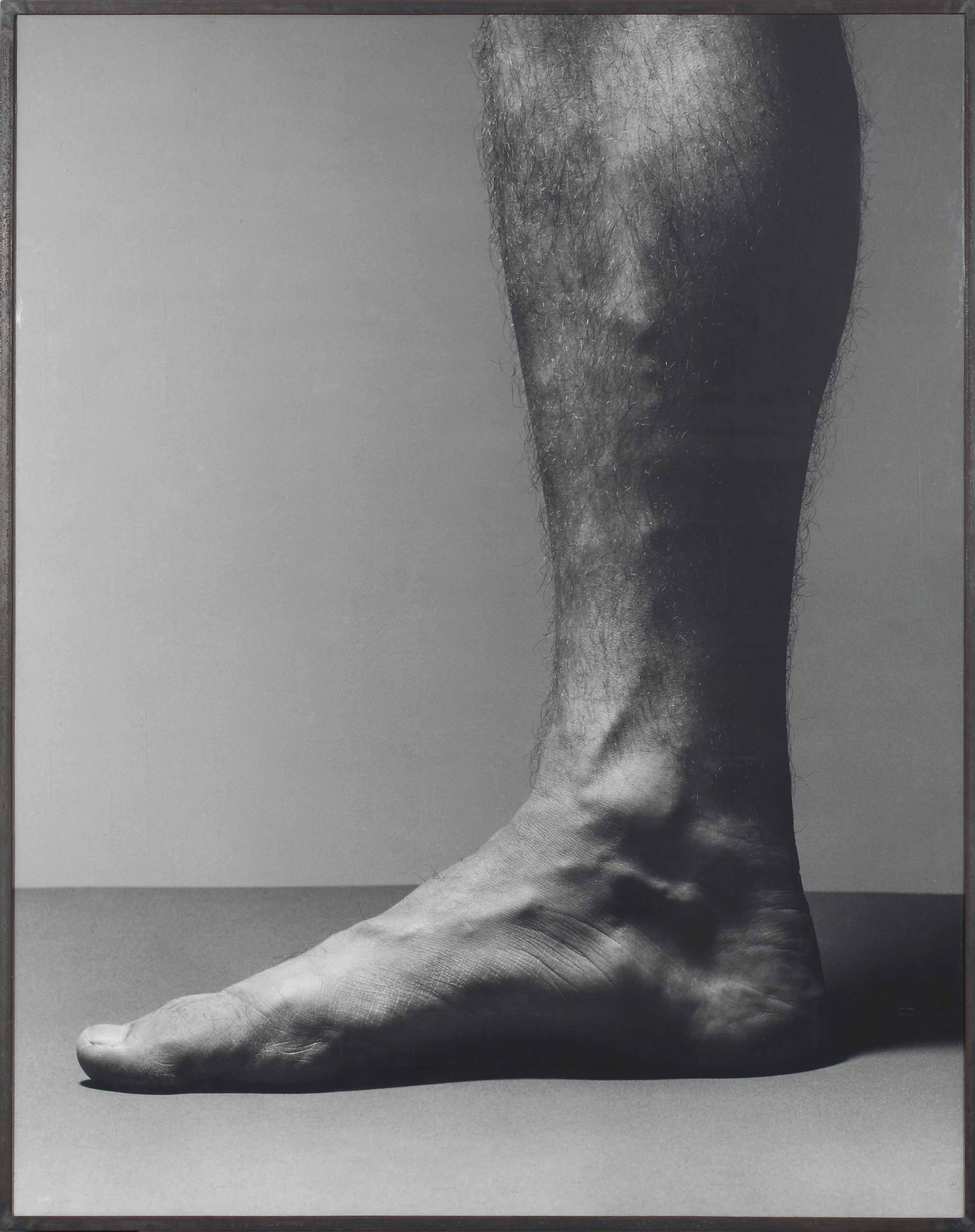 Fuss II/Pied II (Foot II)
