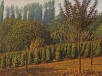Le Poème des saisons, Fructidor