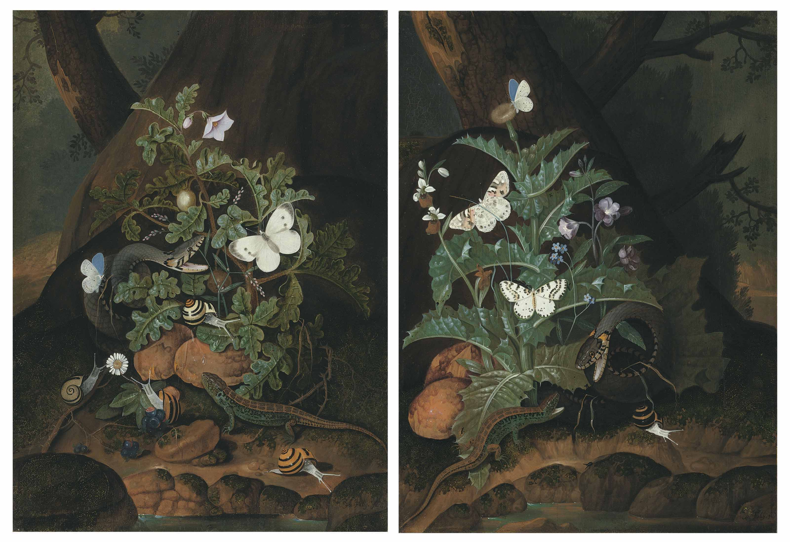 Two forest floors with a snake, lizard, butterflies and snails amongst weeds on a riverbank