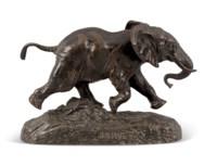Éléphant du Sénégal (Senegalese Elephant)