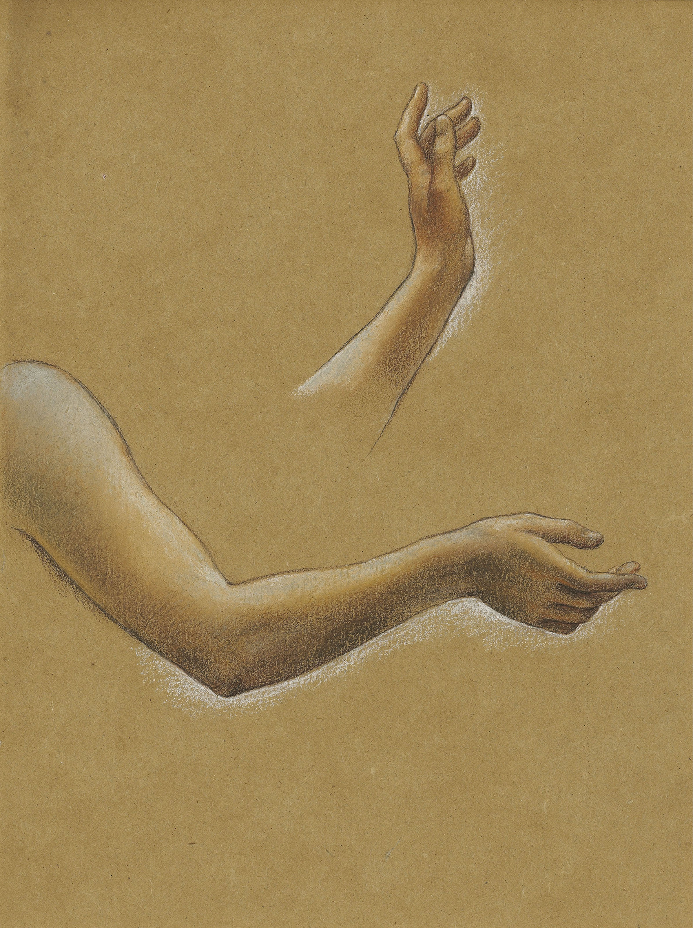 Studies of ankles and feet; and Studies of arms