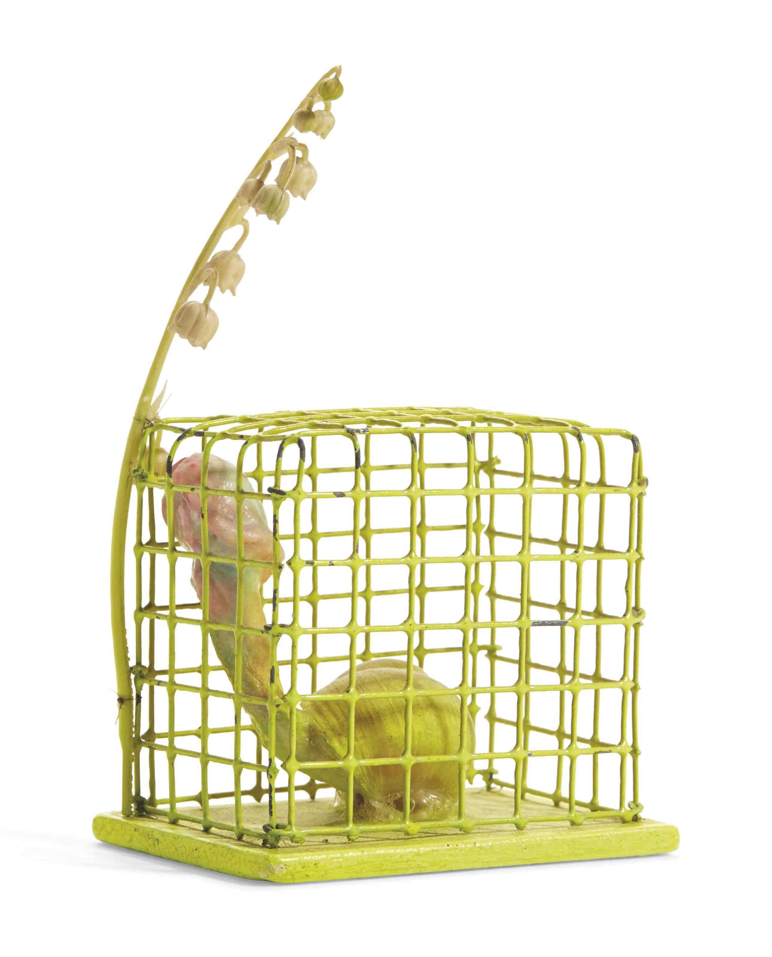Cage Jaune (Yellow Cage)