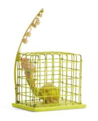 Cage Jaune (Yellow Cage)