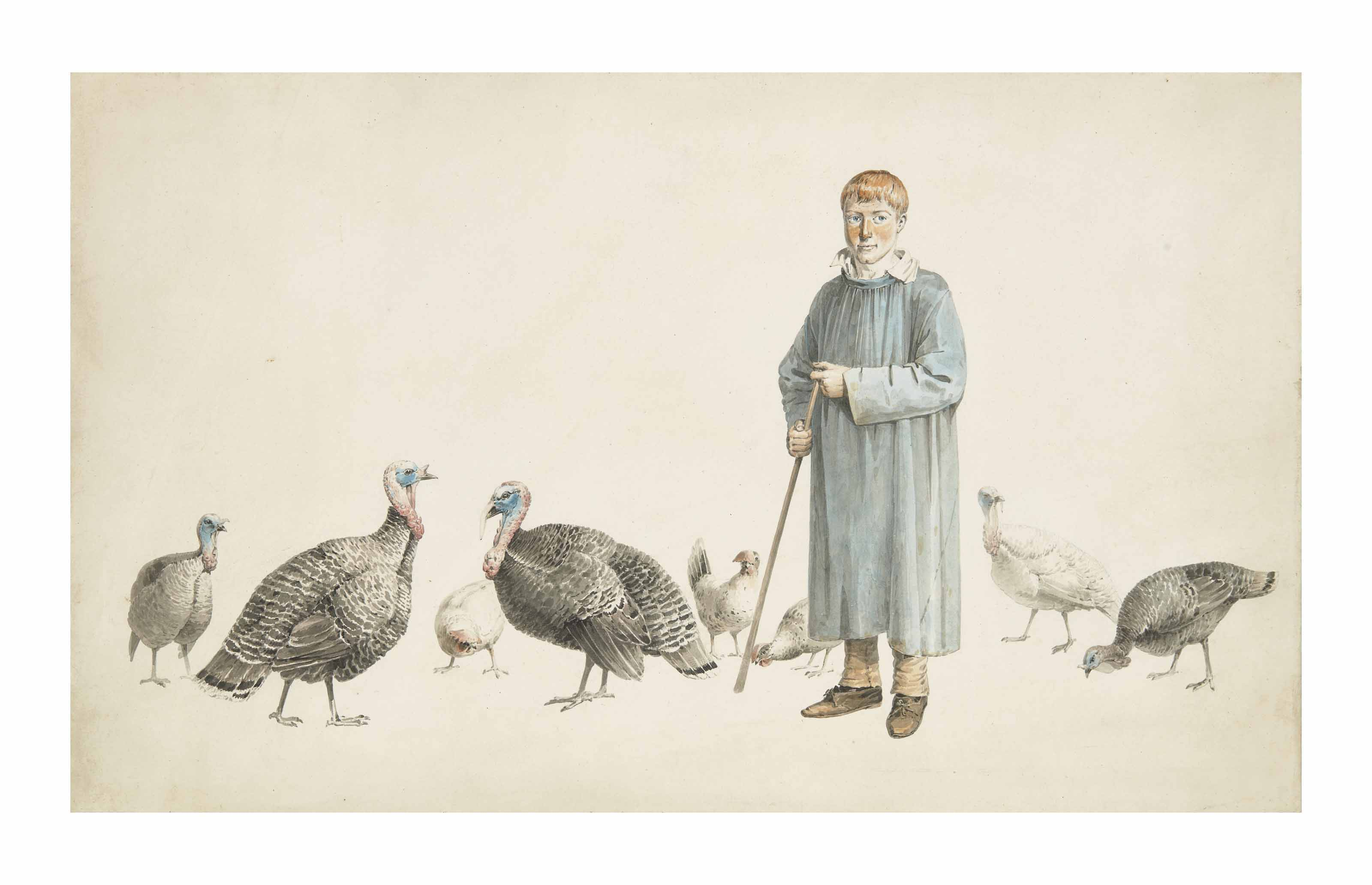 A boy with turkeys