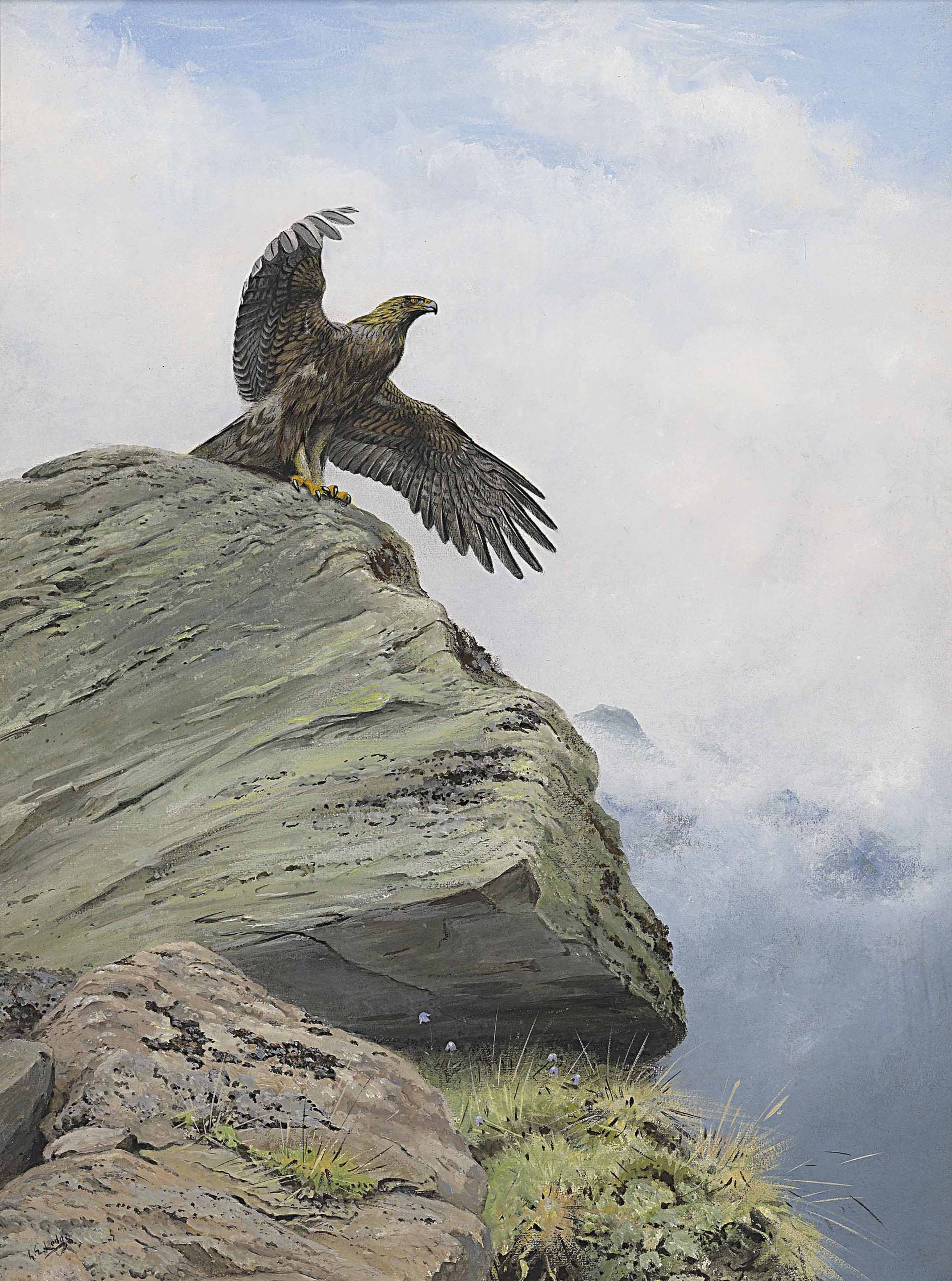 A golden eagle with outspread wings on a rocky outcrop