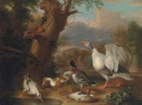 A goose, mallard and ducks before a lake, with a hawk perched on a tree branch, a village beyond