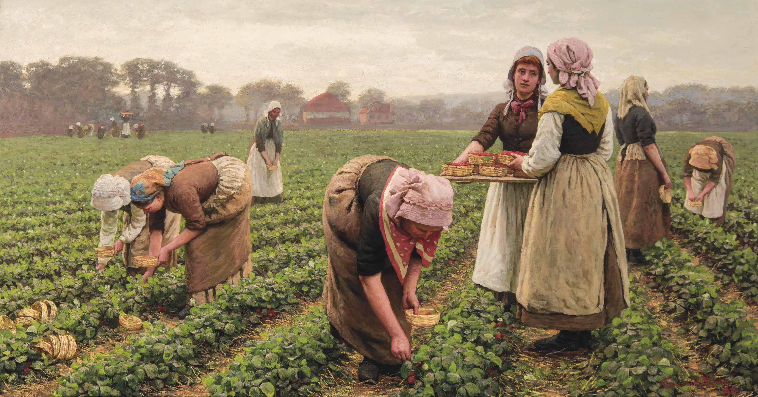 Strawberry gatherers