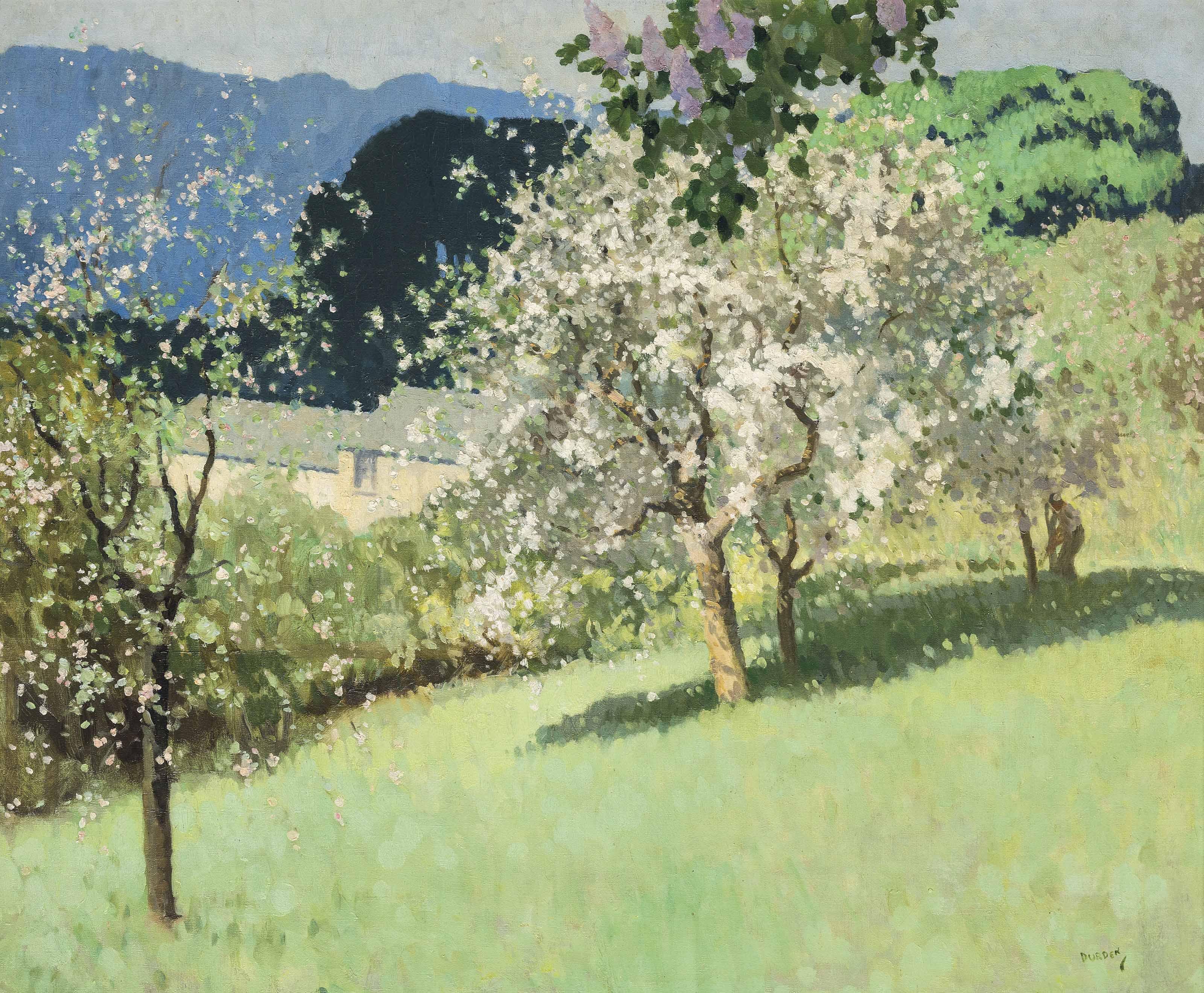 Apple Blossom, Millbeck