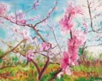 Blossom Series