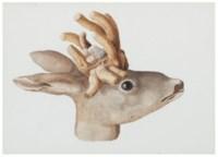 Animal Studies (eight works)