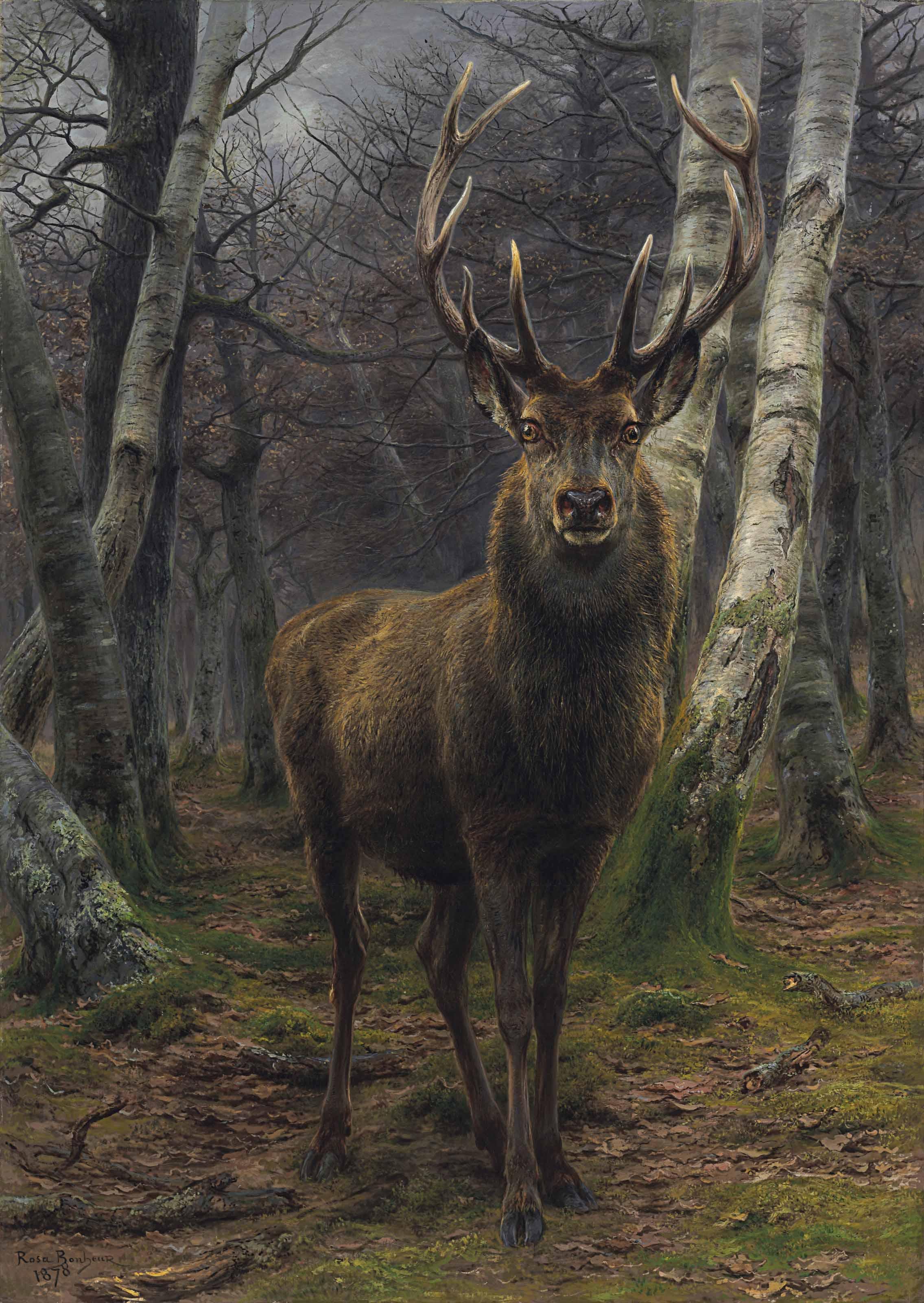 Le Roi de la forêt