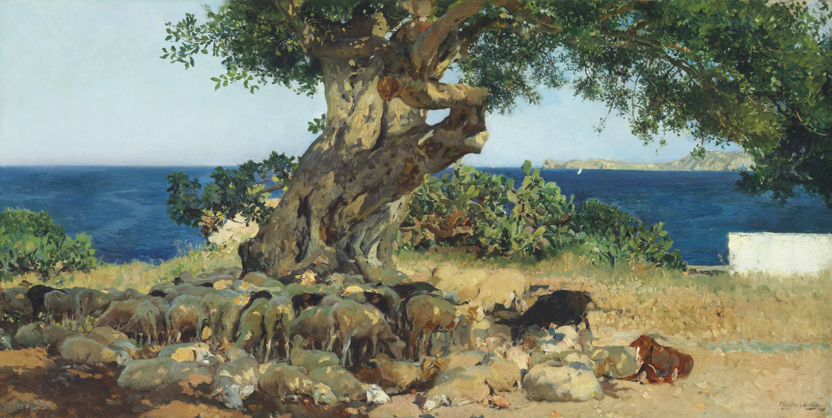 Algarrobo (The Carob Tree)