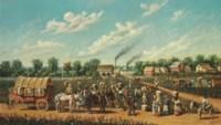 Big B Cotton Plantation