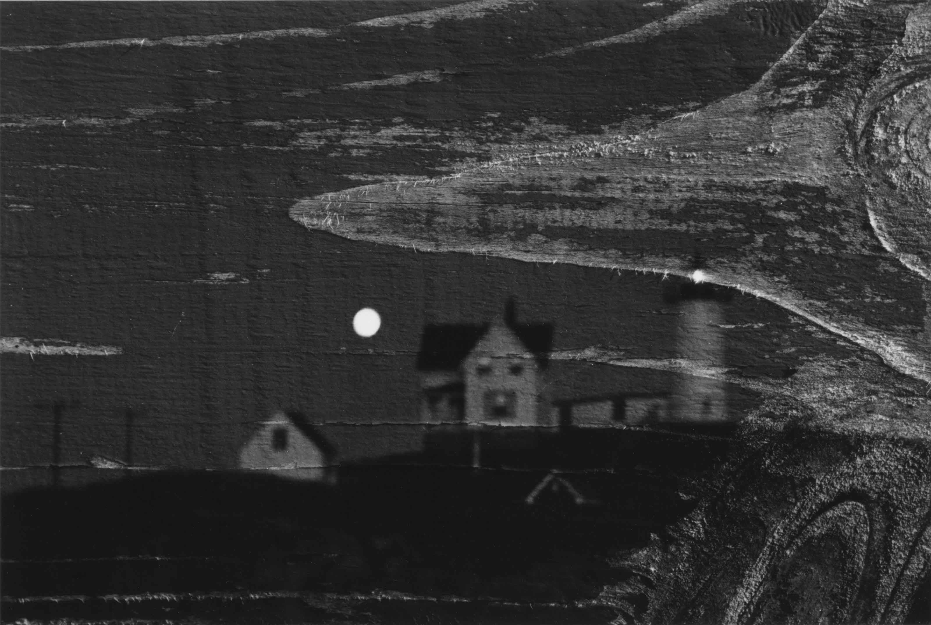 Lighthouse and Wood, Double Negative, 1970