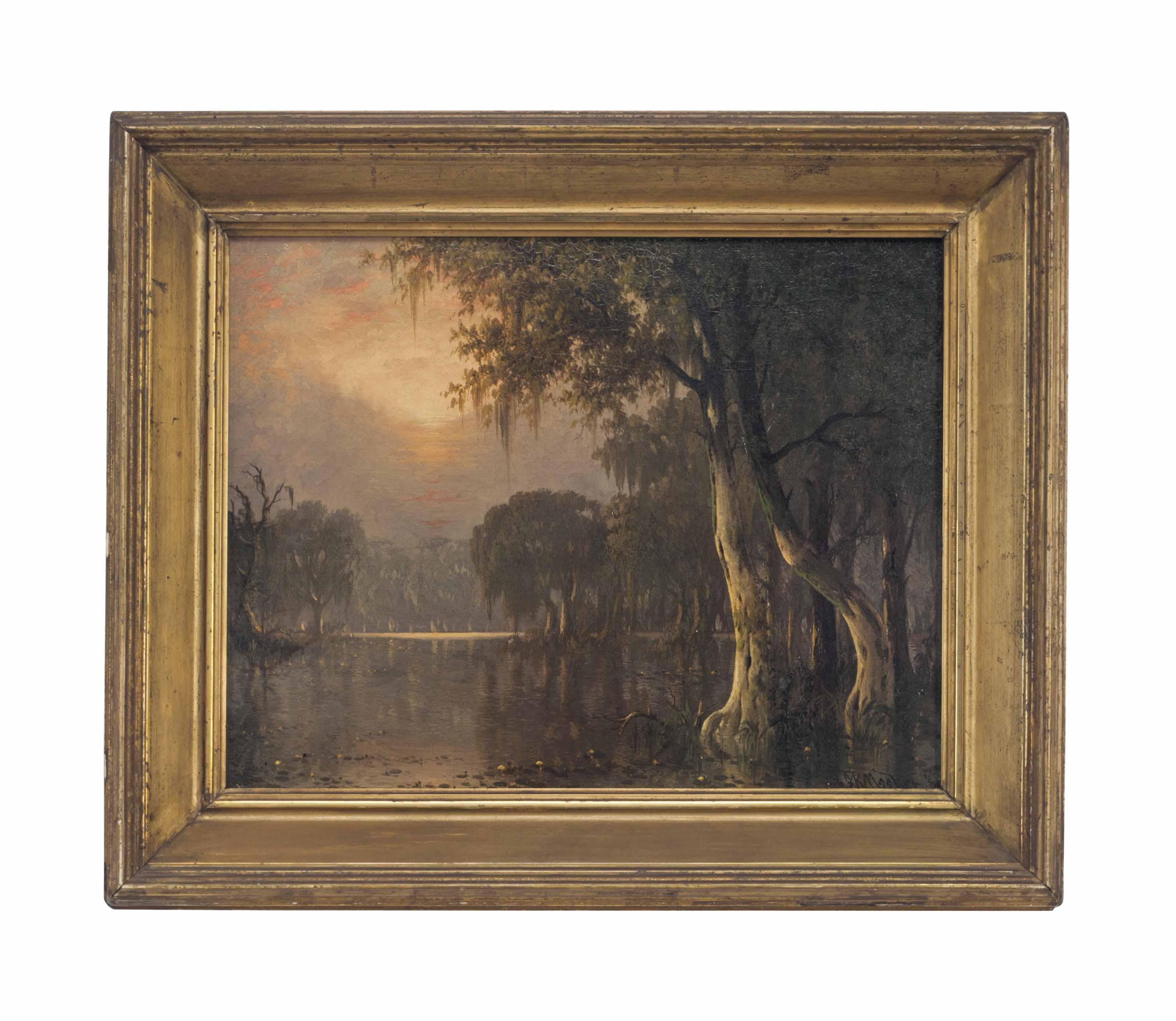 Atchafalaya River Swamp