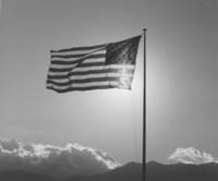 Flag, 1987