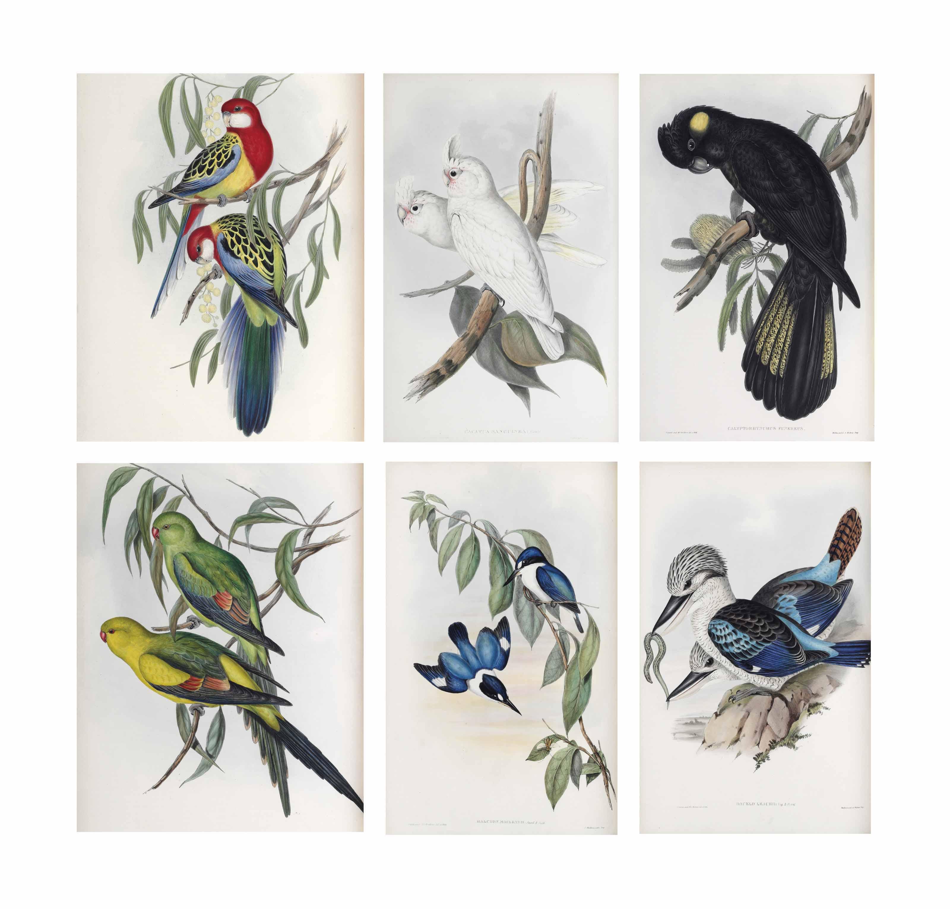 GOULD, John (1804-1881). The Birds of Australia. London: Richard and John E. Taylor for the author, [1840]-1848--Supplement. London: Taylor and Francis for the author, [1851]-1869.