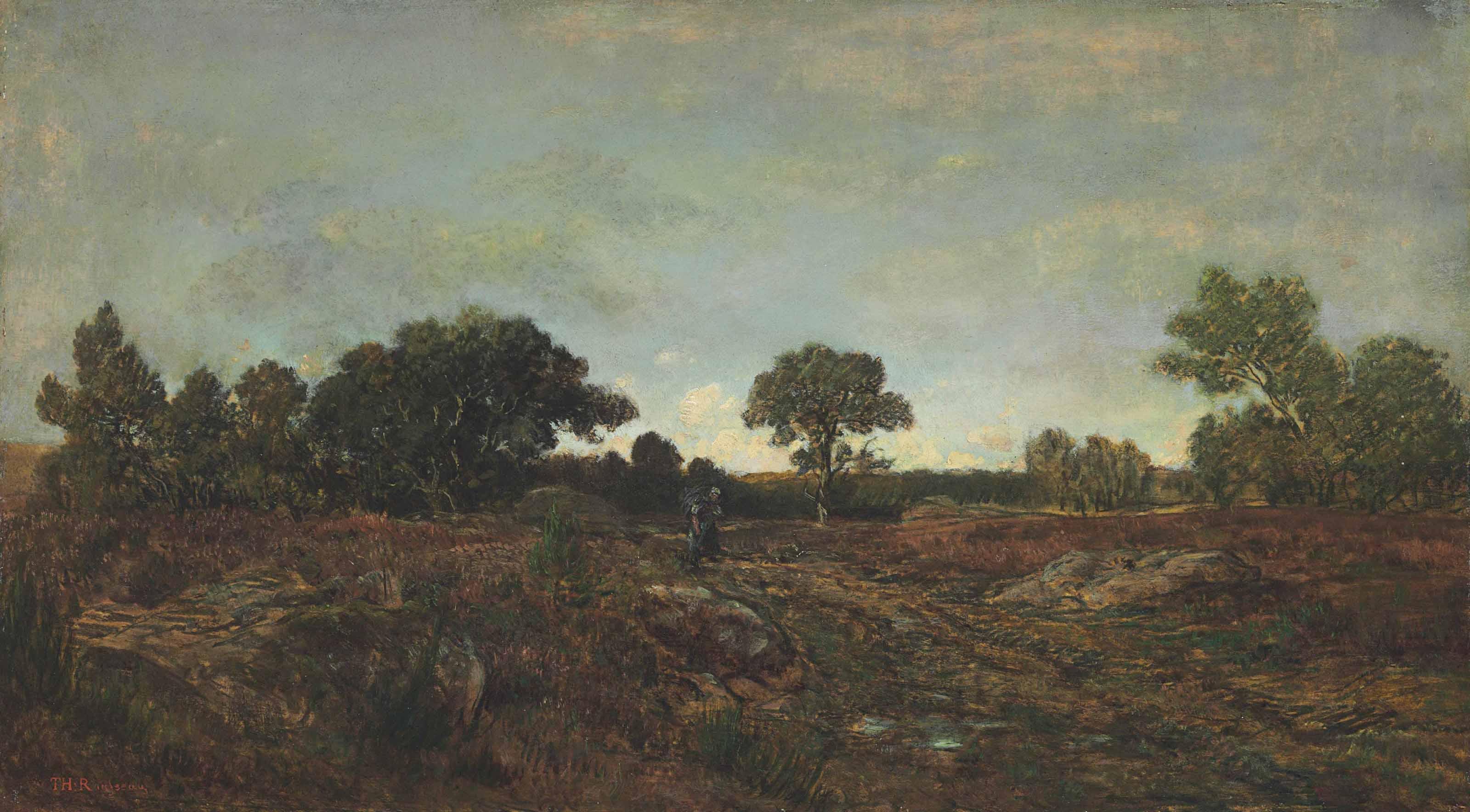 Sentier dans la clairière parmi les bruyères