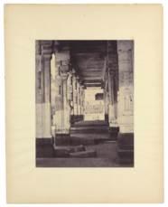 CAPTAIN LINNAEUS TRIPE (1822–1
