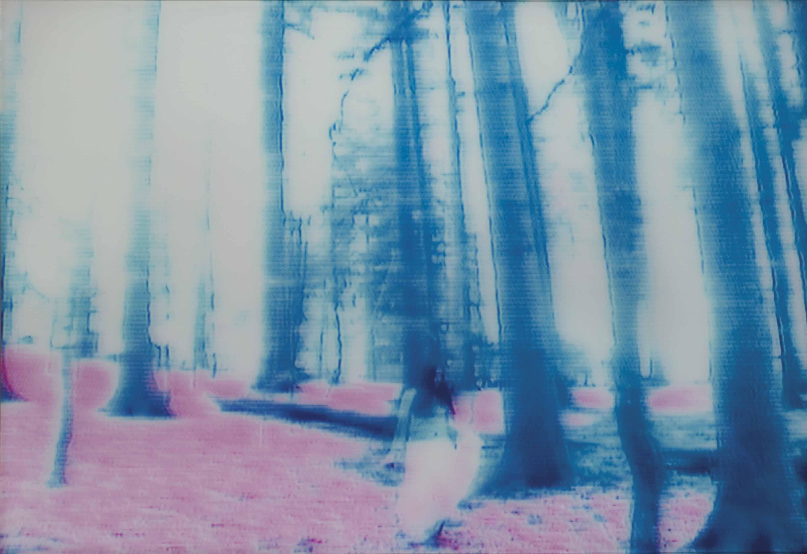 Nyima 83, 2003