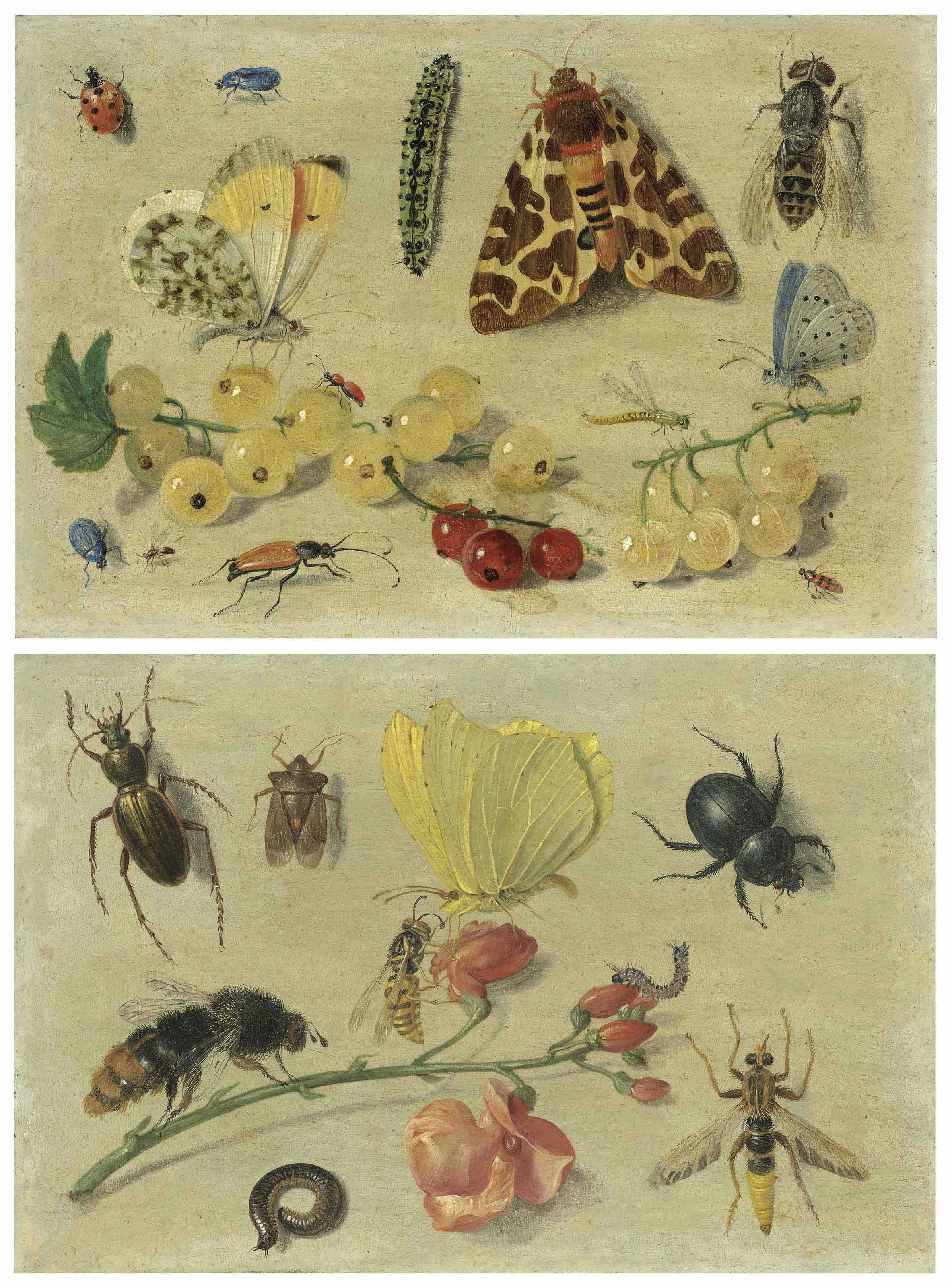 Butterflies, a garden tiger moth and other insects with currants; and Bees, a butterfly, beetles and other insects with sweet peas