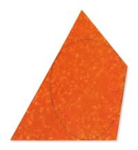 Irregular Red-Orange Area with A Drawn Ellipse #3