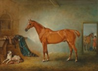 Lord Henry Bentinck's chestnut hunter Firebird and Policy, a foxhound, in a loose box