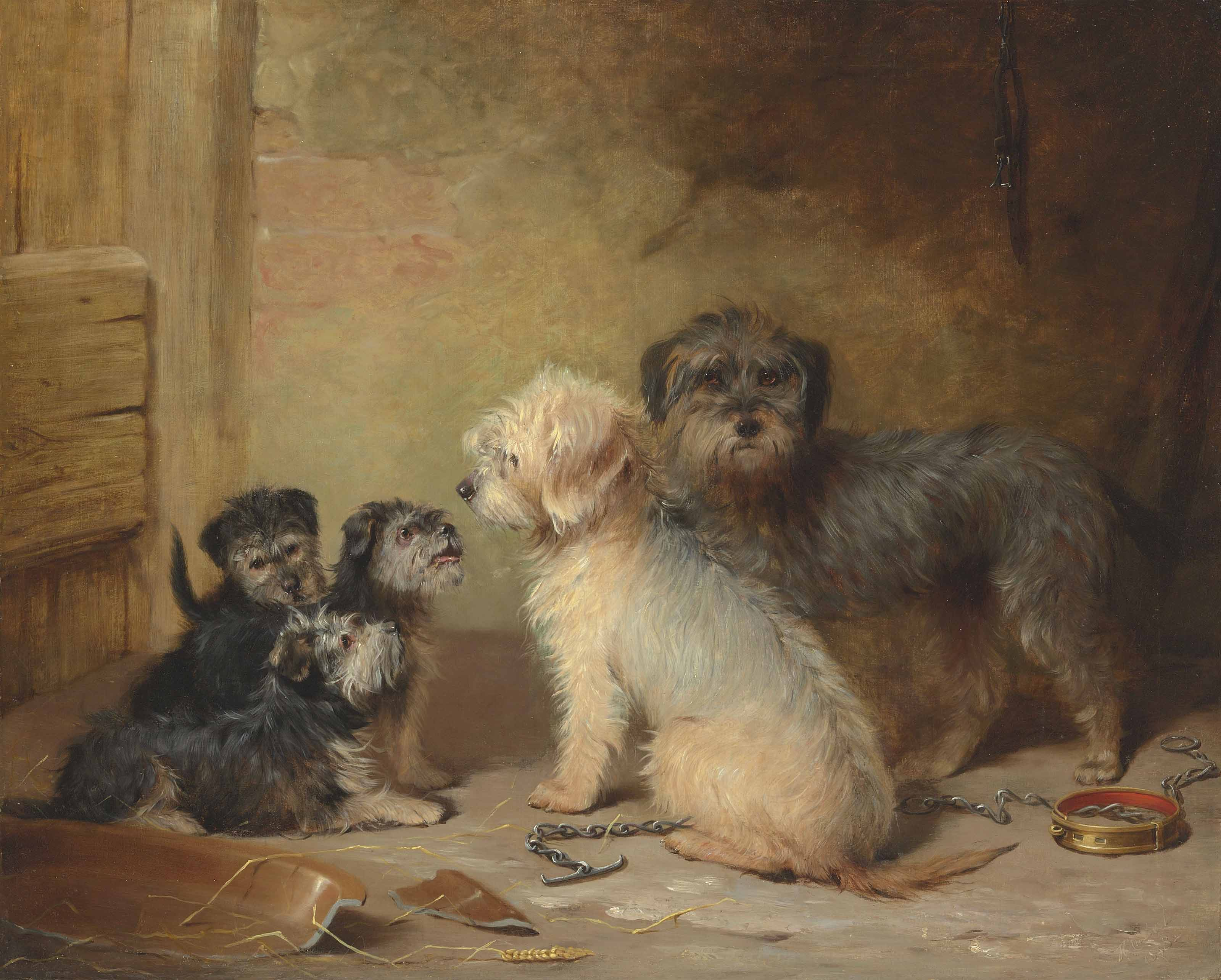 The Dandie Dinmont family