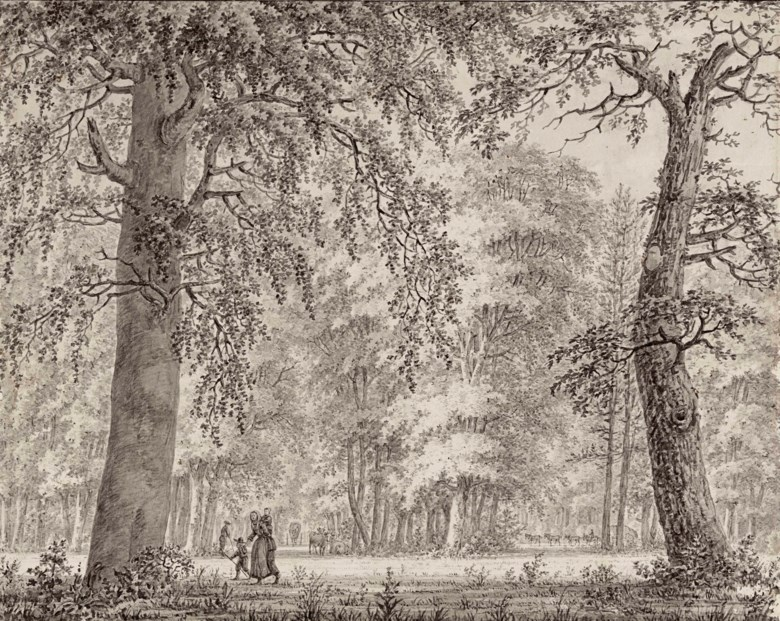 Johann Edler Goll van Frankenstein (Frankfurt 1722-1785 Velsen), Travellers in a wood. 14 x 17⅝  in (35.4 x 44.8 cm). Estimate £3,000-5,000. Offered in Old Master & British Drawings & Watercolours  on 3 July 2018 at Christie's in London