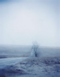 Untitled #5157, 2006