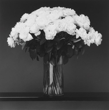 Robert Mapplethorpe (1946-1989), Roses, 1988. Sheet 23⅞ x 23⅞  in (60.5 x 50.5  cm). Estimate £10,000-15,000. Offered in Photographs on 17 May at Christie's in London