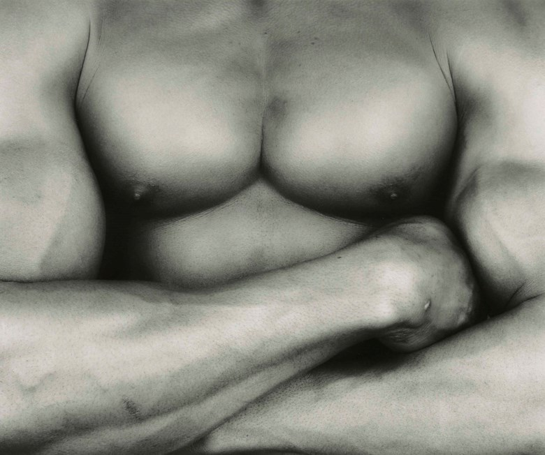Robert Mapplethorpe (1946-1989), ChestLivingston, 1987. Sheetflush-mount 20 x 24  in (50 x 60.5  cm). Estimate £6,000-8,000. Offered in Photographs on 17 May at Christie's in London