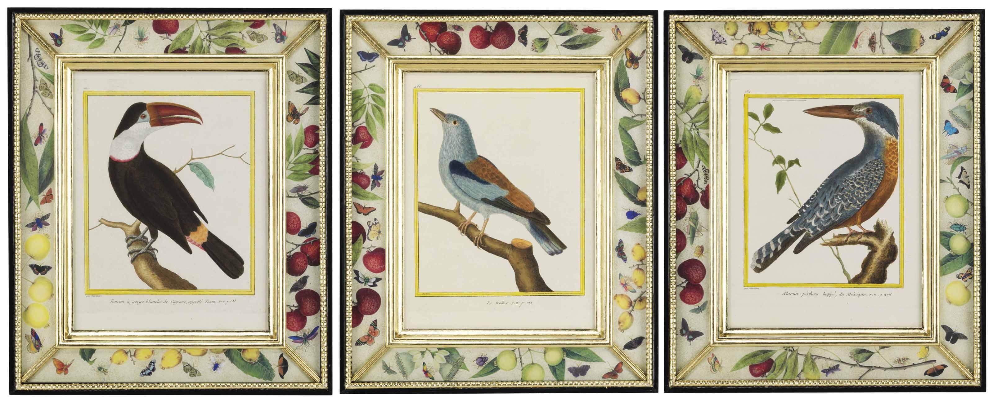 TWELVE HAND-COLOURED MEZZOTINTS OF BIRDS FROM HISTOIRE NATURELLE DES OISEAUX