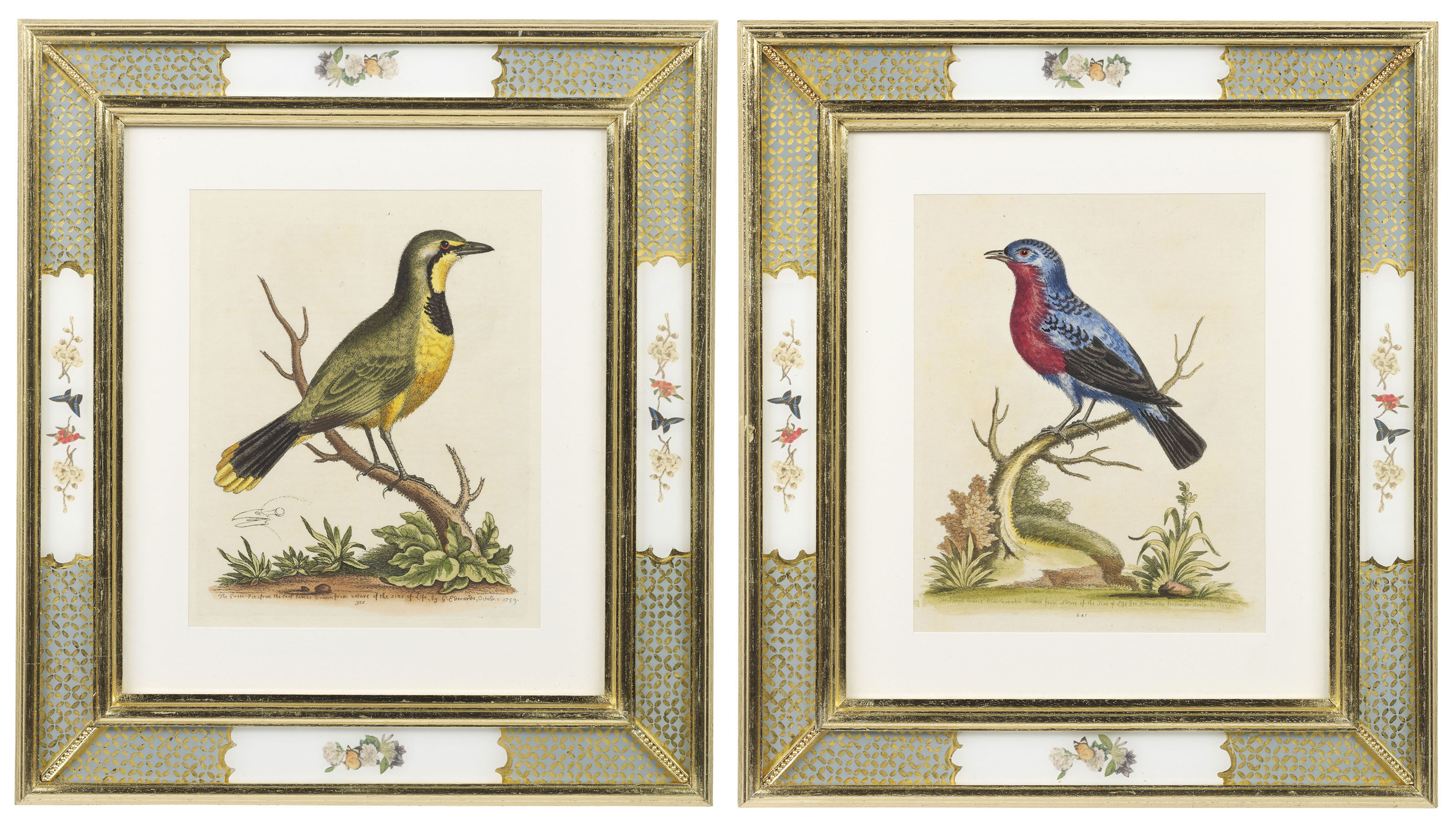 TWELVE HAND-COLOURED MEZZOTINTS FROM 'A NATURAL HISTORY OF UNCOMMON BIRDS'
