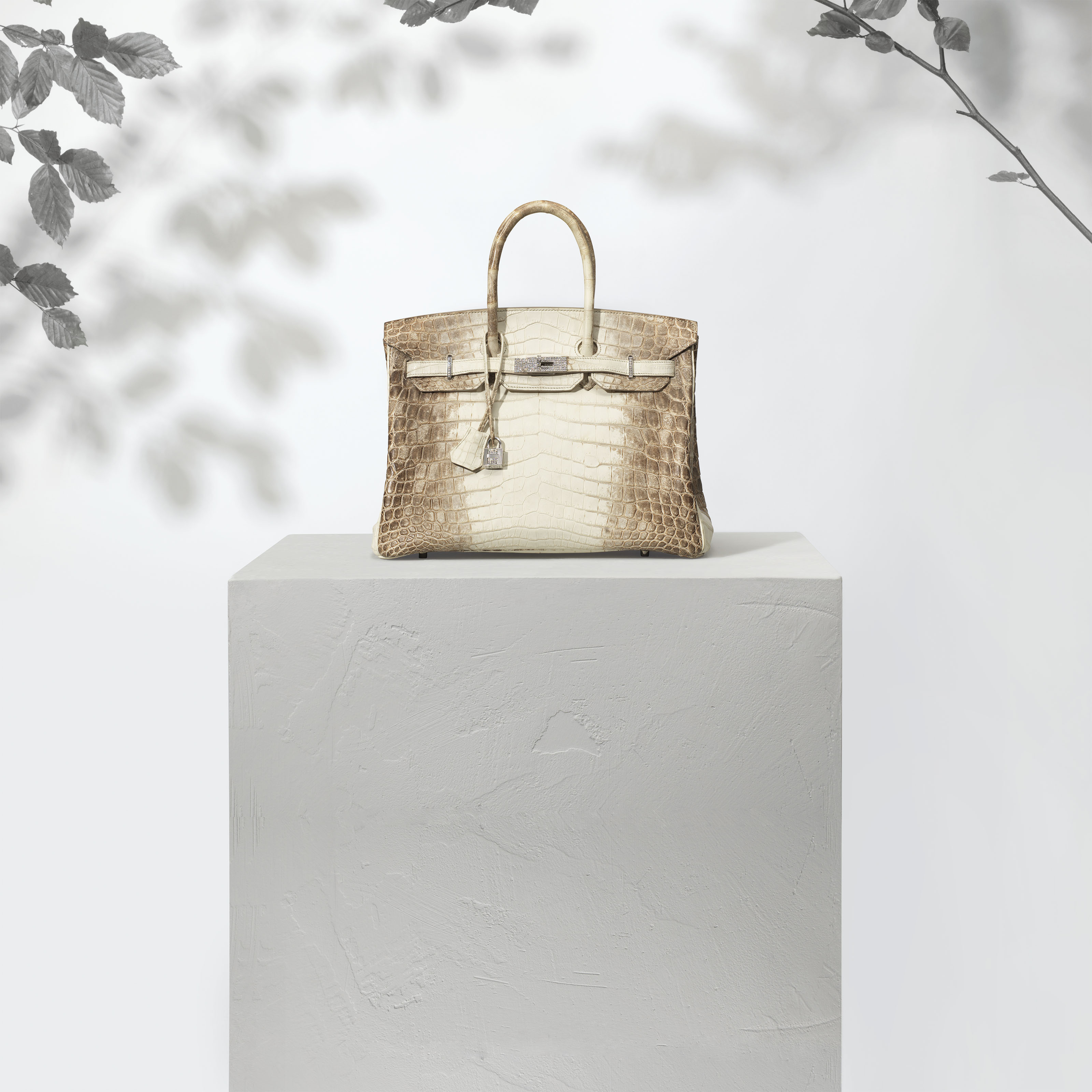 A RARE & EXCEPTIONAL, MATTE HIMALAYA NILOTICUS CROCODILE DIAMOND BIRKIN 35 WITH 18K WHITE GOLD & DIAMOND HARDWARE