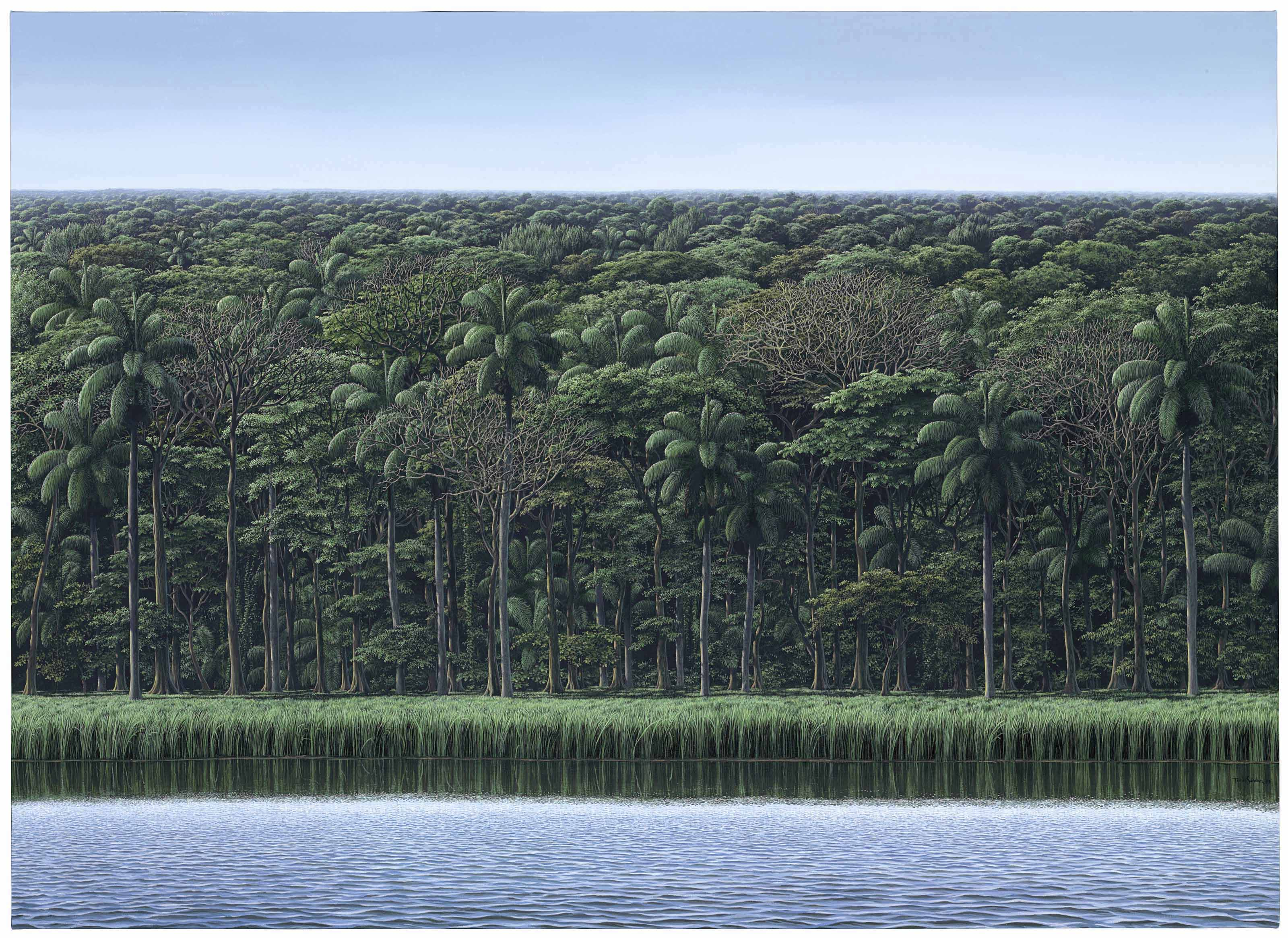 Tomás Sánchez (b. 1948), Visión de orilla, 2009. 48 x 66½  in (121.9 x 168.9  cm). Estimate $400,000-600,000. Offered in Latin American Art on 23-24 May at Christie's in New York