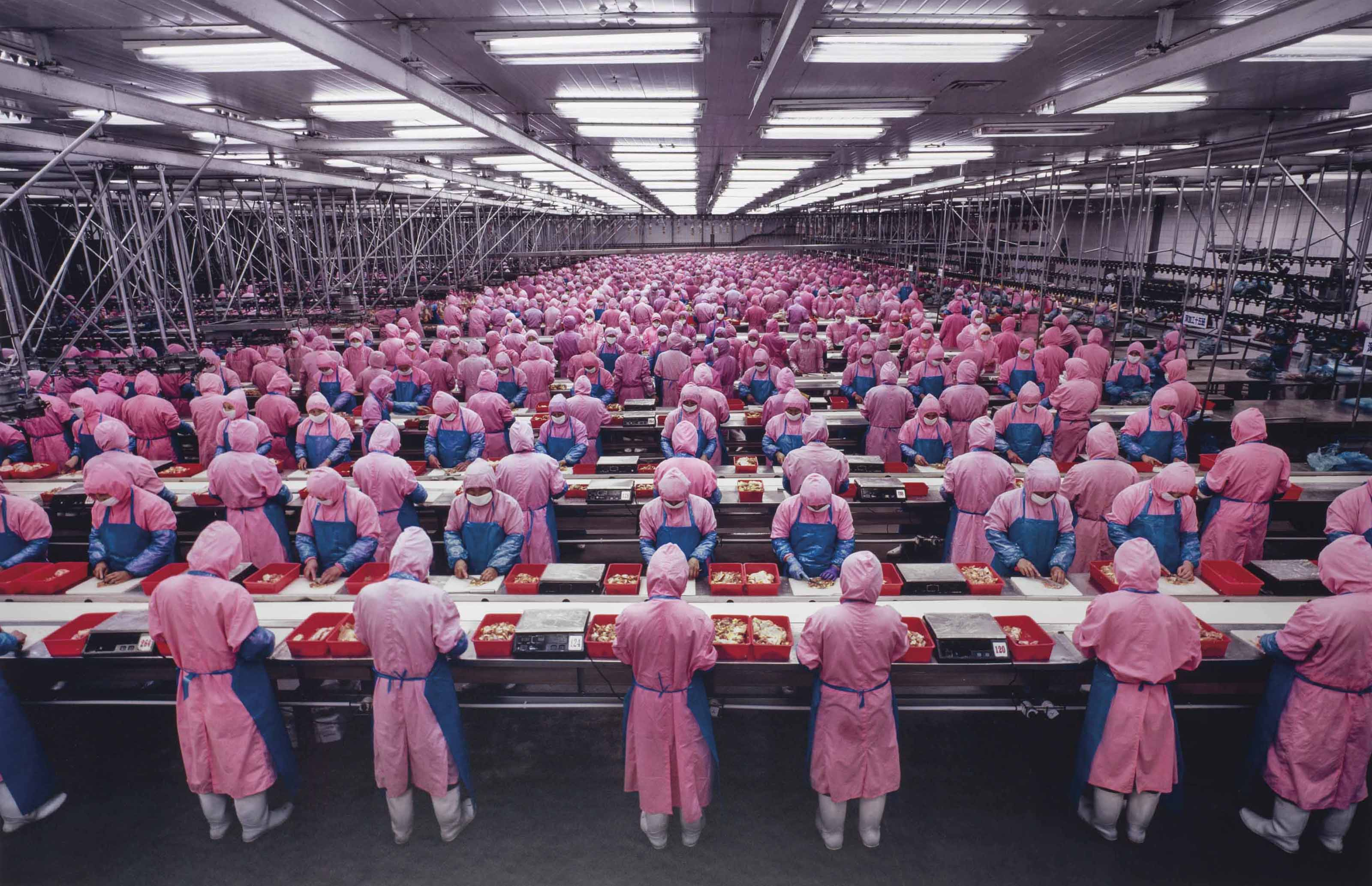 Manufacturing #17, Deda Chicken Processing Plant, Dehui City, Jilin Province, China, 2005