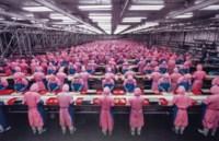 Manufacturing #17, Deda Chicken Processing Plant, Dehui City, Jilin Province, China, 2005